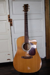 Great Martinmartin SPDC-16R Special Edition that I've used on many recordings. This guitar sounds and records very well.